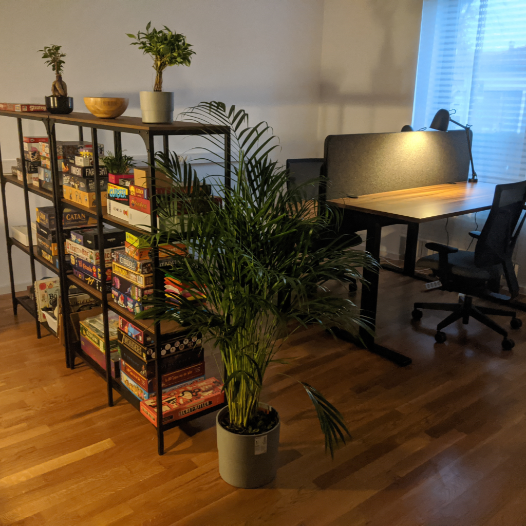 Bookshelves holding games and 2 desks